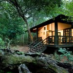 Phinda Forest Lodge_thumb