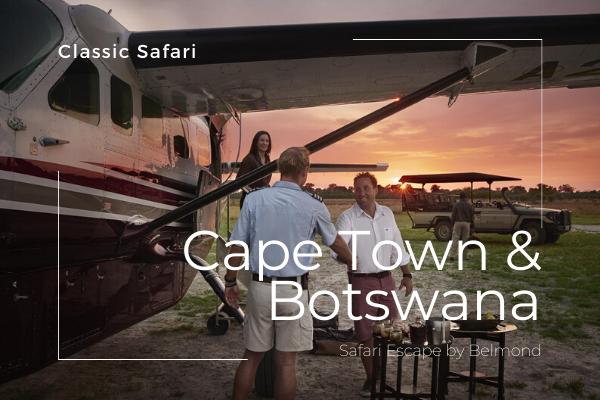 Das Beste von Kapstadt und Botswana